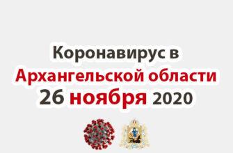 Коронавирус в Архангельской области 26 ноября 2020
