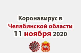 Коронавирус в Челябинской области 11 ноября 2020