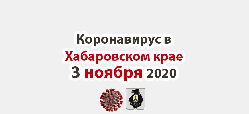 Коронавирус в Хабаровском крае 3 ноября 2020