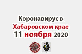 Коронавирус в Хабаровском крае 11 ноября 2020