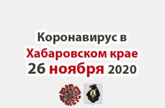 Коронавирус в Хабаровском крае 26 ноября 2020
