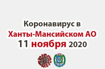 Коронавирус в Ханты-Мансийском АО 11 ноября 2020