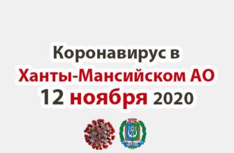 Коронавирус в Ханты-Мансийском АО 12 ноября 2020