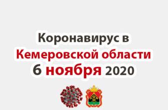 Коронавирус в Кемеровская области 6 ноября 2020
