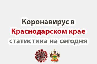 Коронавирус в Краснодарском крае статистика на сегодня