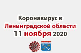 Коронавирус в Ленинградской области на 11 ноября 2020 года