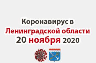 Коронавирус в Ленинградской области на 20 ноября 2020 года