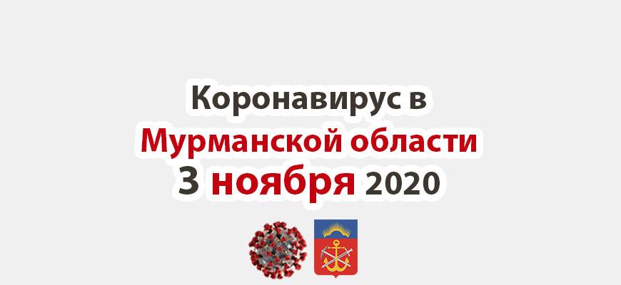 Коронавирус в Мурманской области 3 ноября 2020