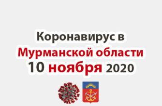 Коронавирус в Мурманской области 10 ноября 2020
