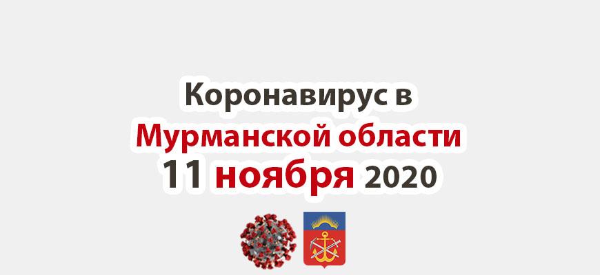 Коронавирус в Мурманской области 11 ноября 2020