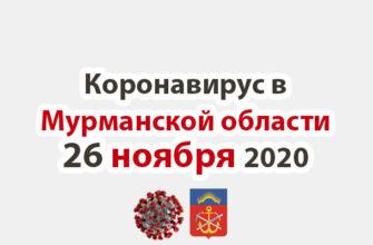 Коронавирус в Мурманской области 26 ноября 2020