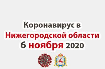 Коронавирус в Нижегородской области на 6 ноября 2020 года