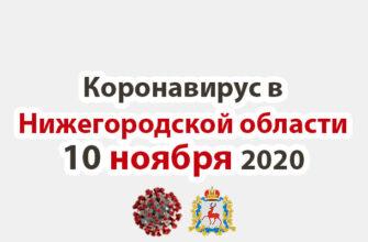 Коронавирус в Нижегородской области на 10 ноября 2020 года