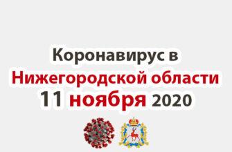 Коронавирус в Нижегородской области на 11 ноября 2020 года
