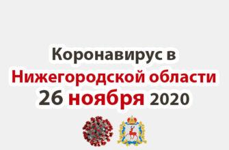Коронавирус в Нижегородской области на 26 ноября 2020 года
