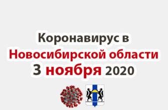 Коронавирус в Новосибирской области 3 ноября 2020