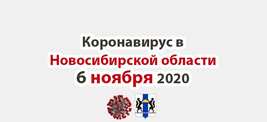 Коронавирус в Новосибирской области 6 ноября 2020