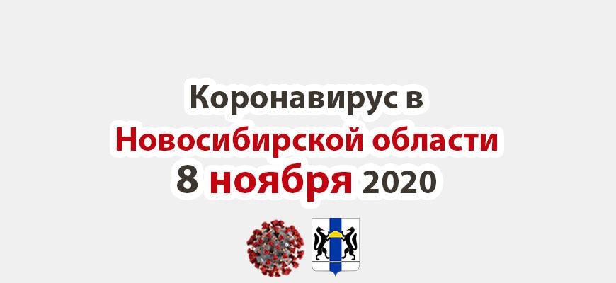 Коронавирус в Новосибирской области 8 ноября 2020