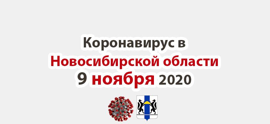 Коронавирус в Новосибирской области 9 ноября 2020