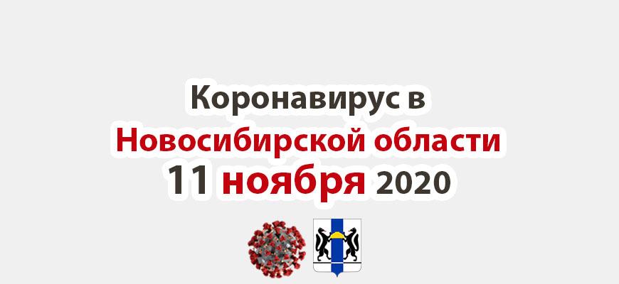 Коронавирус в Новосибирской области 11 ноября 2020