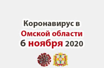 Коронавирус в Омской области 6 ноября 2020