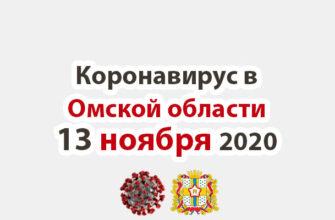 Коронавирус в Омской области 13 ноября 2020