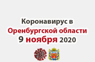 Коронавирус в Оренбургской области 9 ноября 2020