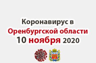 Коронавирус в Оренбургской области 10 ноября 2020