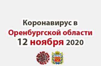 Коронавирус в Оренбургской области 12 ноября 2020