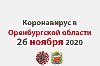Коронавирус в Оренбургской области 26 ноября 2020