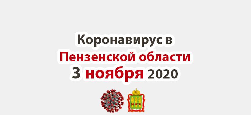 Коронавирус в Пензенской области 3 ноября 2020