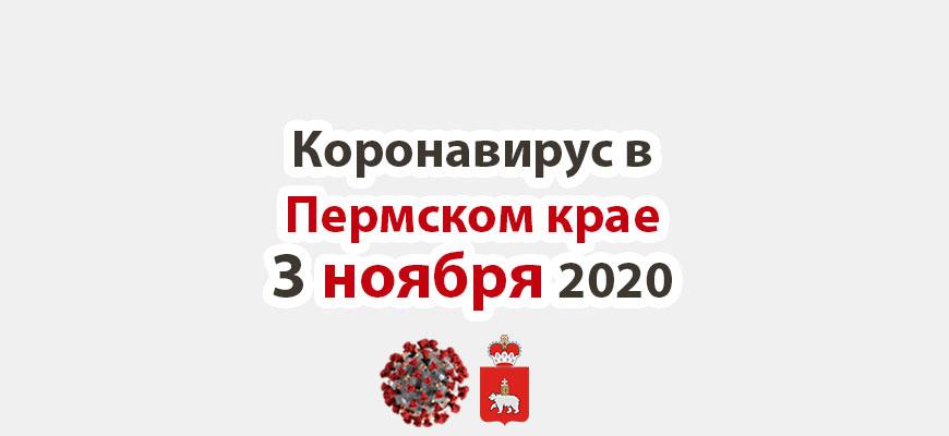 коронавирус в Пермском крае 3 ноября 2020