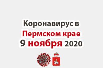 Коронавирус в Пермском крае 9 ноября