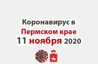 Коронавирус в Пермском крае 11 ноября