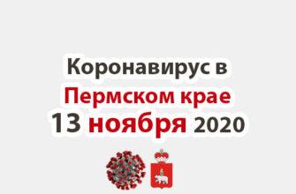 Коронавирус в Пермском крае 13 ноября