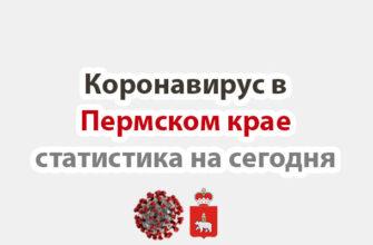 Коронавирус в Пермском крае статистика на сегодня