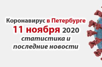 Коронавирус в Санкт-Петербурге на 11 ноября 2020 года