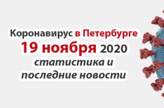 Коронавирус в Санкт-Петербурге на 19 ноября 2020 года