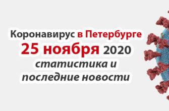 Коронавирус в Санкт-Петербурге на 25 ноября 2020 года