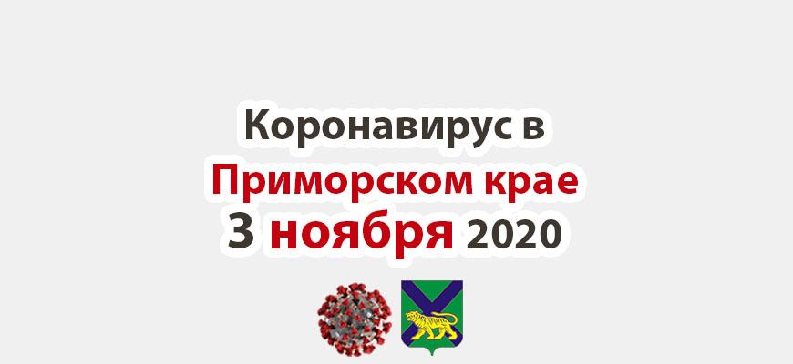 Коронавирус в Приморском крае 3 ноября 2020
