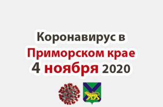 Коронавирус в Приморском крае 4 ноября 2020