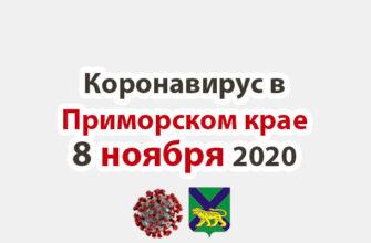 Коронавирус в Приморском крае 8 ноября 2020