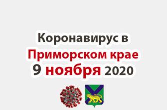 Коронавирус в Приморском крае 9 ноября 2020