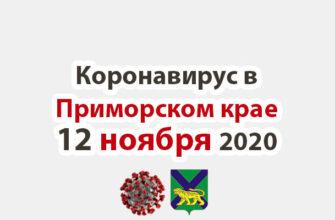 Коронавирус в Приморском крае 12 ноября 2020