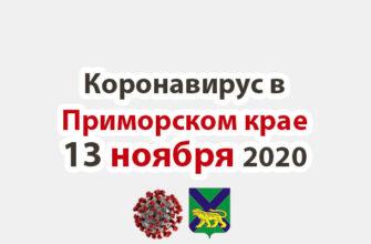 Коронавирус в Приморском крае 13 ноября 2020