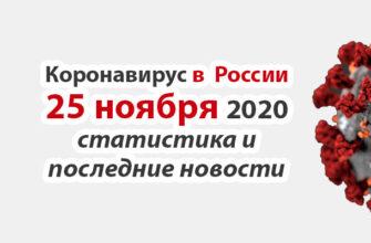 Коронавирус в России на 25 ноября 2020 года