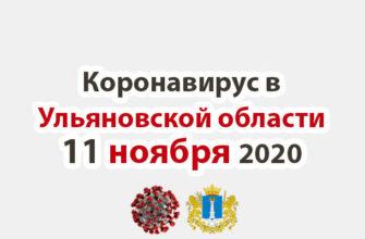 Коронавирус в Ульяновской области 11 ноября 2020