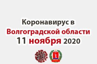 Коронавирус в Волгоградской области 11 ноября 2020