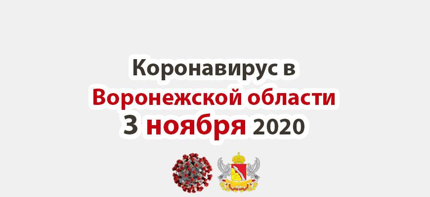 Коронавирус в Воронежской области на 3 ноября 2020 года
