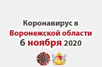 Коронавирус в Воронежской области на 6 ноября 2020 года
